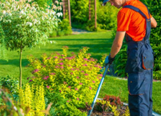 Mantenimiento de jardines immocerkel - Mantenimiento de jardines ...