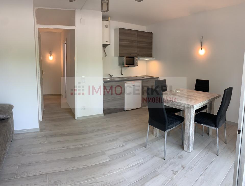 Coqueto apartamento de 1 habitación en el centro
